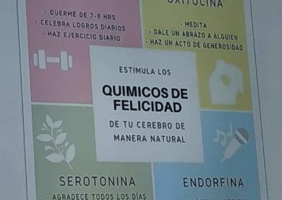 presentacion Inés Torremocha